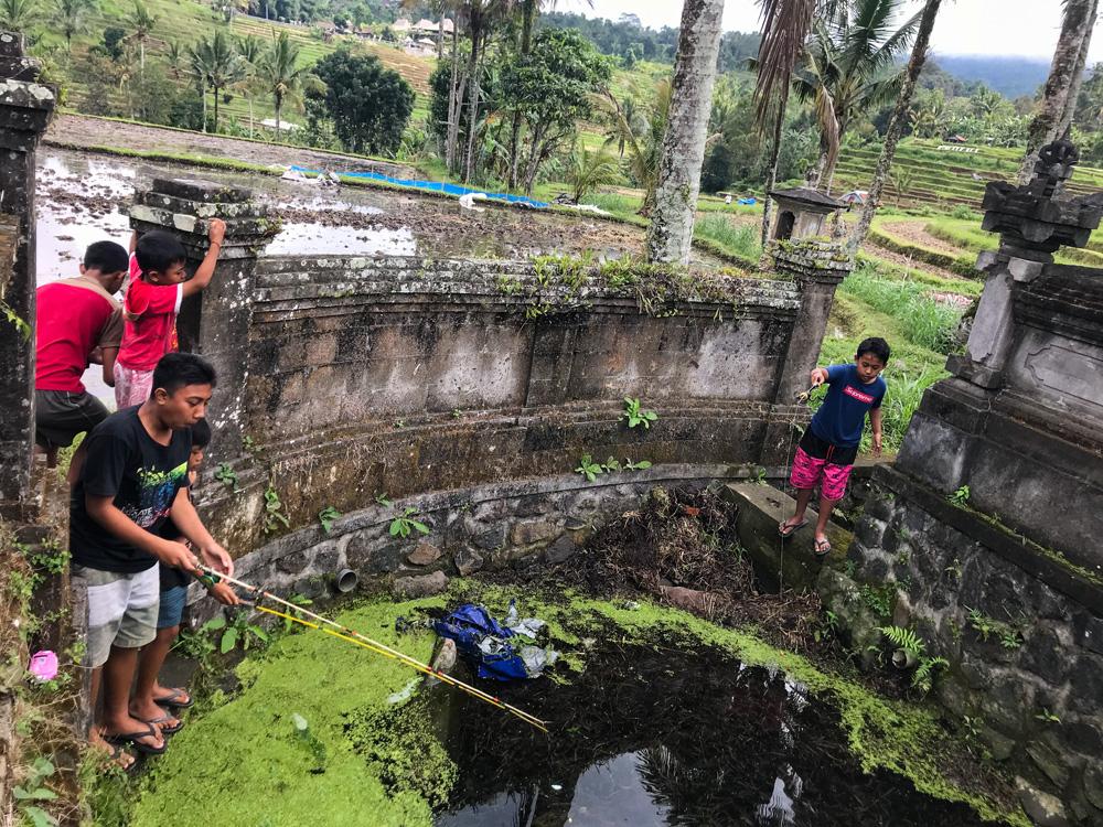 Indonésie Bali Jatiluwih rizières temple enfants