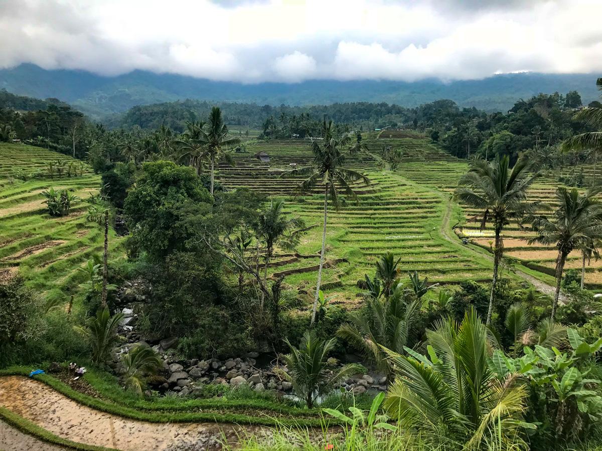 Indonésie Bali Jatiluwih rizières vallée