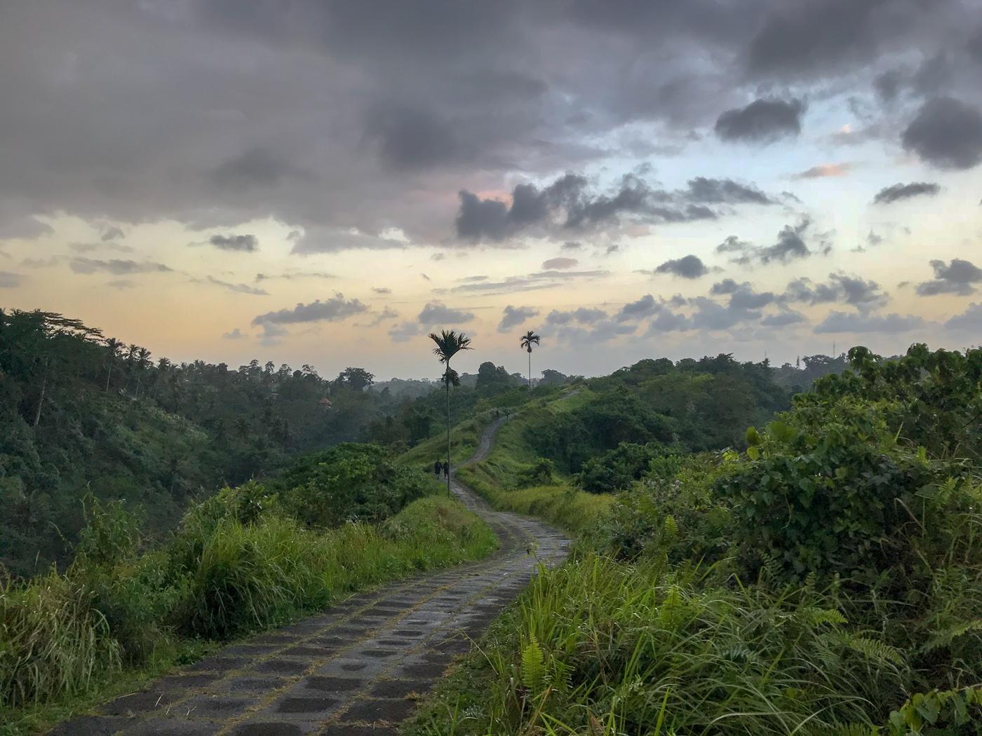 Ubud Indonésie Bali voyage forêt