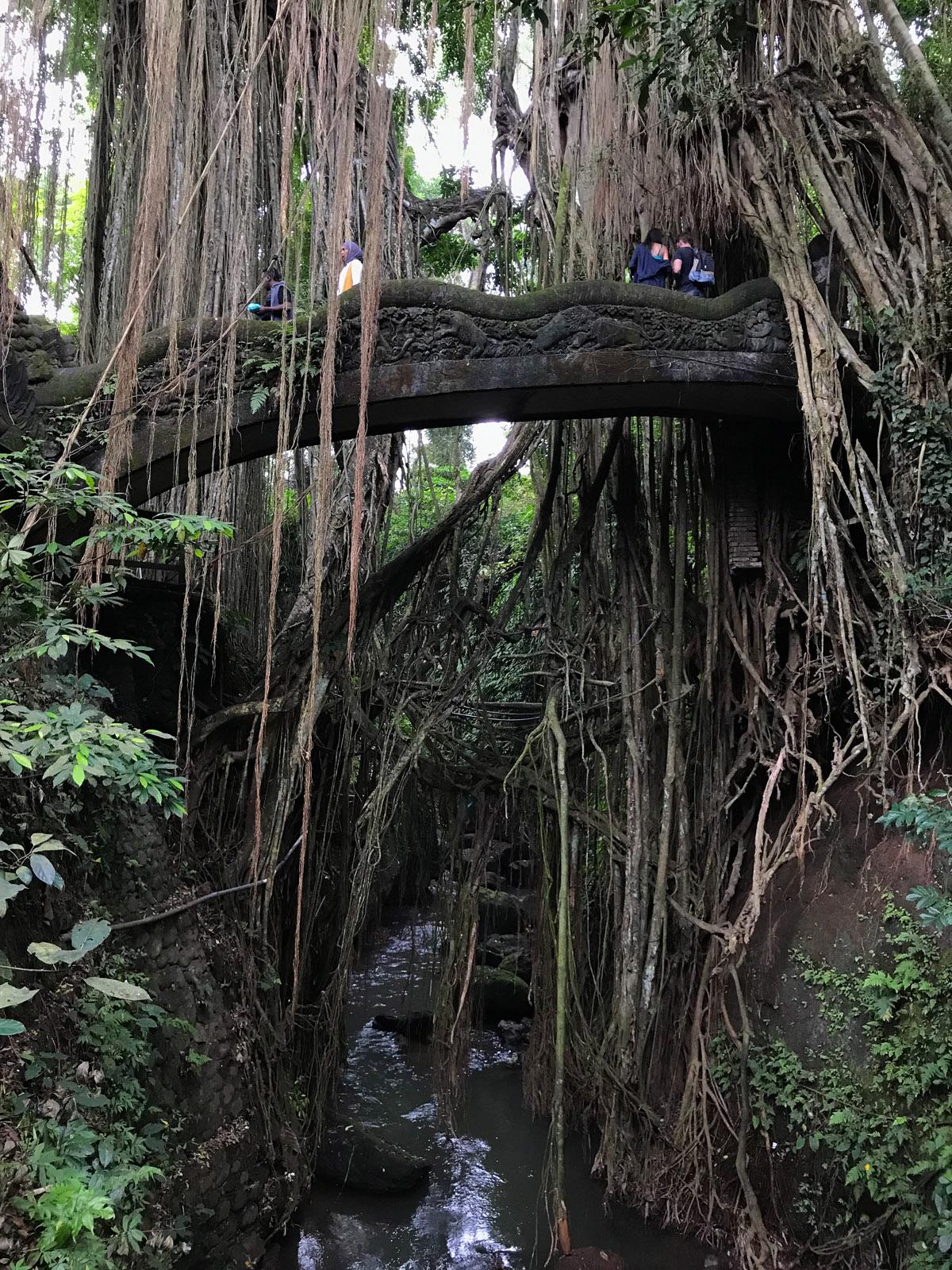 Ubud Indonésie Bali voyage pont monkey forest