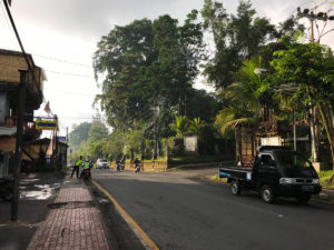 Ubud Indonésie Bali voyage ville