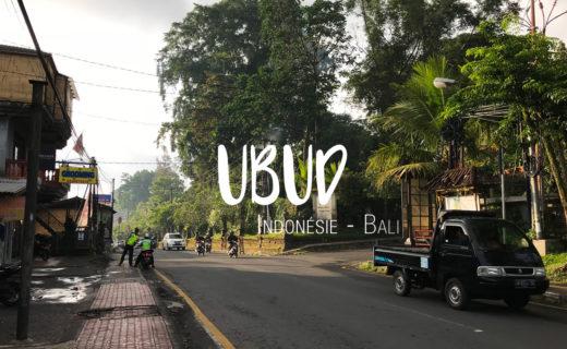 Ubud Bali Indonésie