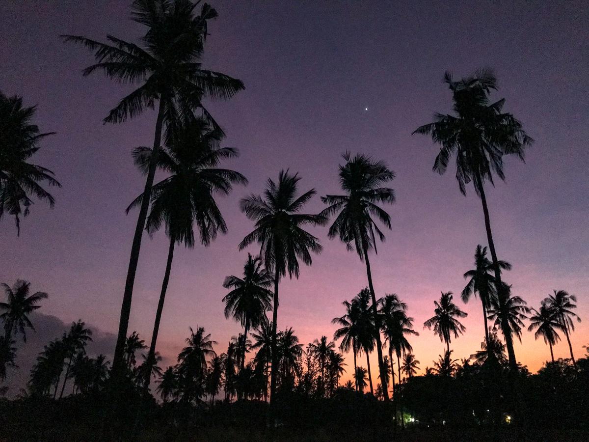 Indonésie Bali Gili Lombok sunset palmiers
