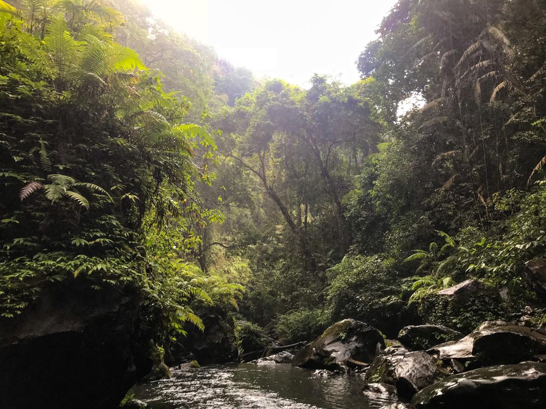 Indonesie Senaru Mont Rinjani cascade Sendang