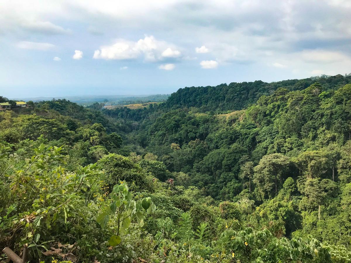 Indonesie Senaru Mont Rinjani cascade vallée