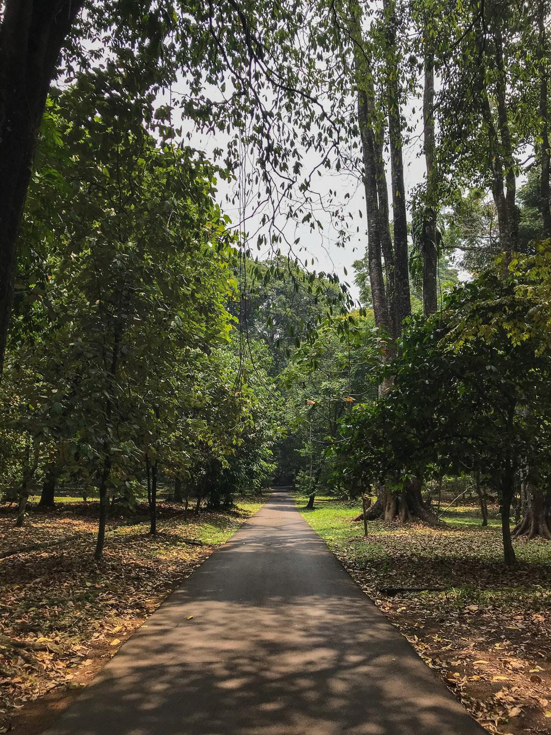 Jakarta Java Indonésie Bogor Parc