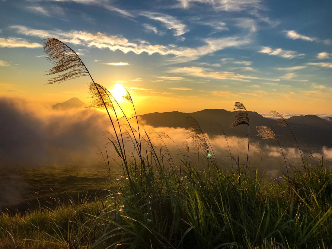 Tomohon Sulawesi Indonésie Volcan Lokon Lever de soleil herbe