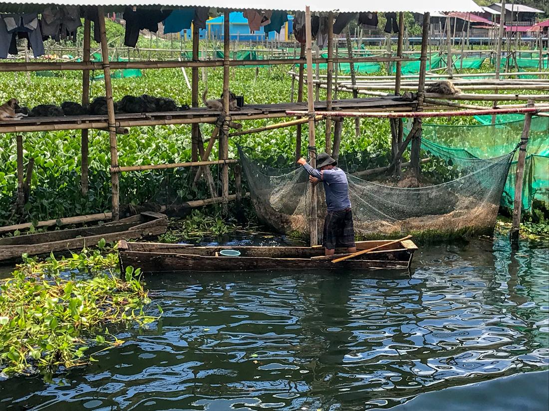 Tomohon Sulawesi Indonésie Tondano Pêcheur