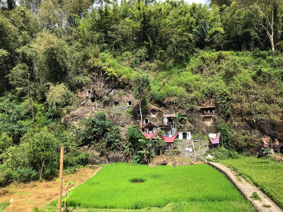 Sulawesi Indonésie Toraja Lemo