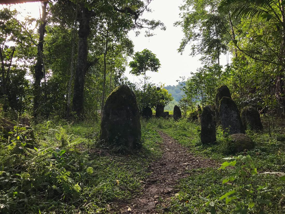 Sulawesi Indonésie Toraja Megalithe