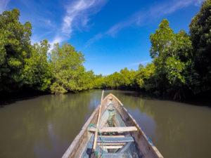 Tumbak Sulawesi Indonésie Mangrove bateau