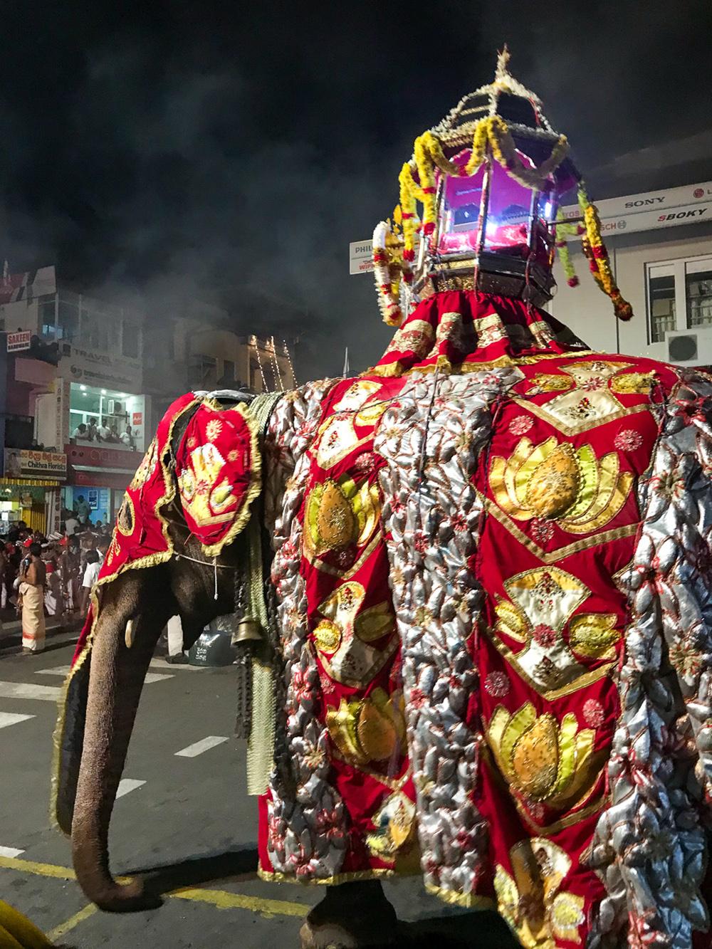 Sri Lanka Kandy Fête Esala Perahera Eléphant Relique