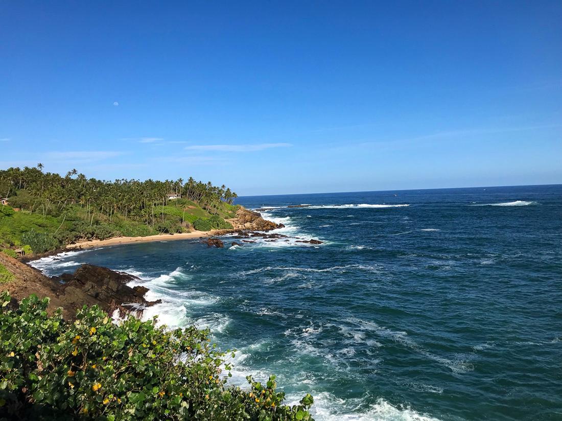 Sri Lanka Mirissa Plage Ocean Palmier