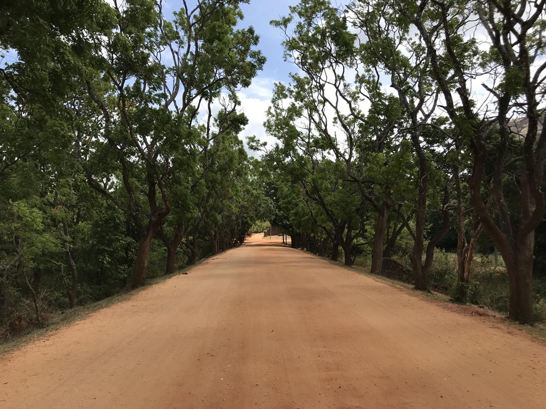 Sri Lanka Sigiriya Route terre