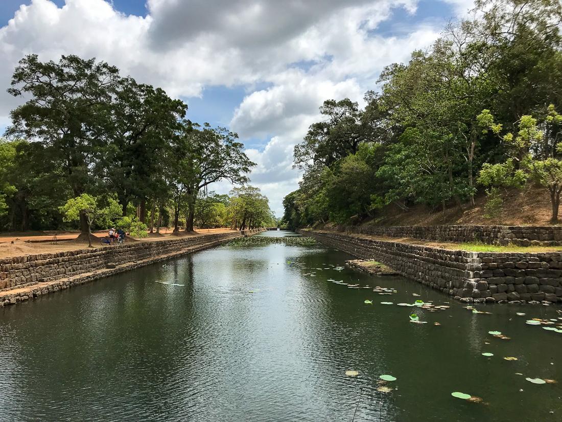 Sri Lanka Sigiriya Douve