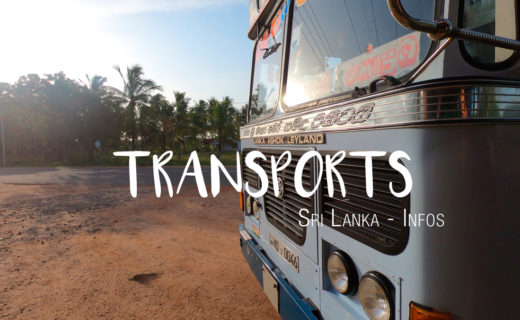 Sri Lanka Transports Bus Train Scooter